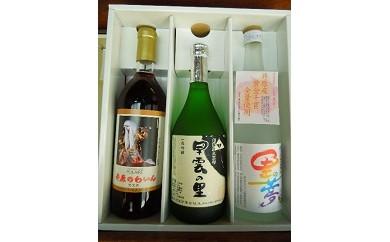 B-03 早雲の里・井原ワイン・里の夢