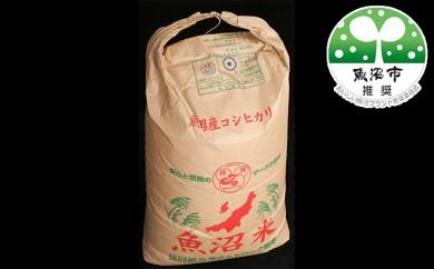 [№5762-0080]北魚沼の旬米コシヒカリ【玄米】30kg袋