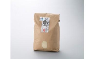 B13 環境こだわり米 魚のゆりかご水田米「コシヒカリ」