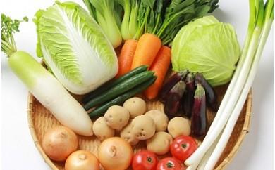 A-14 田村市産季節の野菜