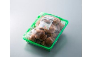 a18 原木生椎茸