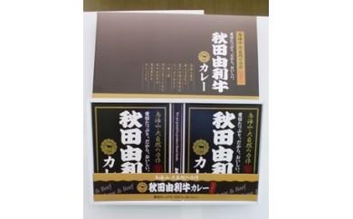 G10113 秋田由利牛カレー 2箱セット