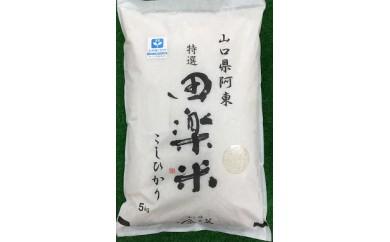 29A-003 特別栽培米「田楽米」100kg【100,000pt】