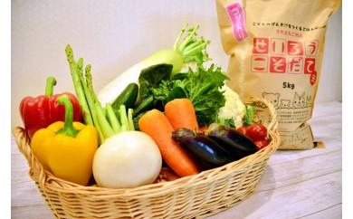 聖籠産米・季節野菜セット
