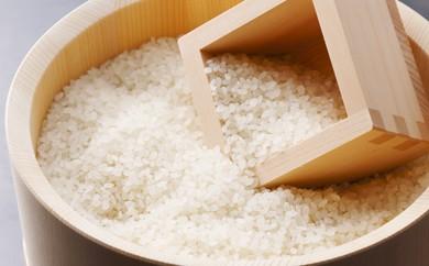 E1-11 福智山麓が育んだブランド米「上野の里米(元気つくし)」20kg