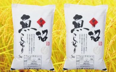 [№5762-0109]農家直送!魚沼産コシヒカリ精米10kg (5kg×2個)