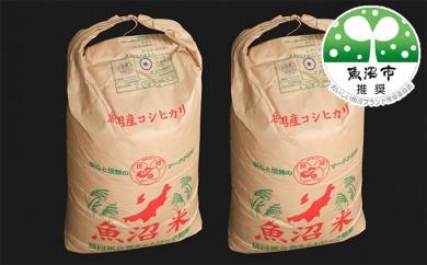 [№5762-0081]北魚沼の旬米コシヒカリ【玄米】60kg(30kg袋×2)