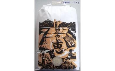 022904 特別栽培米 伊豆の恵