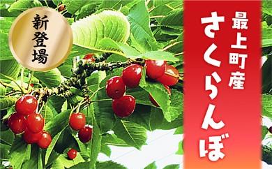 012-S001 【数量限定】最上町産さくらんぼ佐藤錦 秀Lサイズ バラ1kg