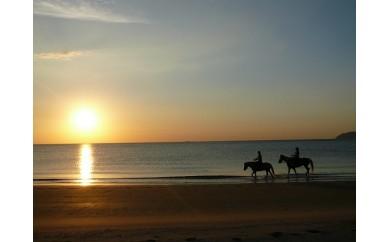 A576 究極の癒し 波音を聞きながら乗馬体験ペア