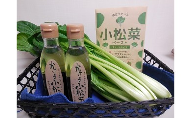 29A046 自社栽培野菜とかける小松菜ソースのセット