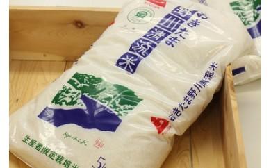 H1207 極上こだわり野川清流米「コシヒカリ」 10kg