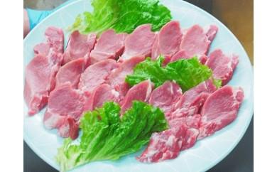 A5-021 ★魔法の豚ヒレ★九州産豚ヒレ45g 20枚