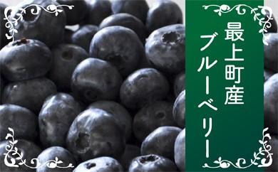 014-B002 最上町産ブルーベリー【冷凍】 ※発送は9月~3月になります。