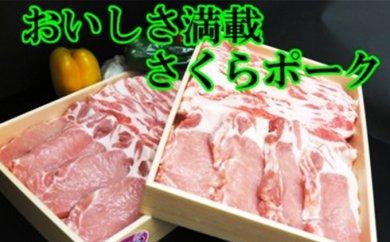 B-004 ★おいしさ満載セット★肥前さくらポーク・バラエティ