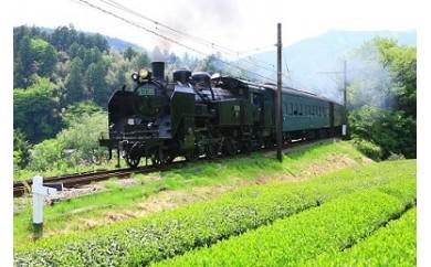 F05 SL列車と南アルプスあぷとラインの旅(2日間2名様)