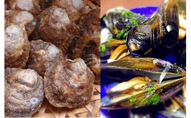 G-05 豊前海産特選生鮮ムール貝とイタボガキの詰合せ(B)