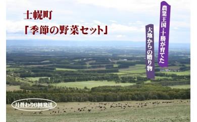 【C02】士幌産「季節の野菜セット(月替わり6回発送)」