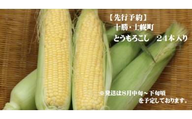 【A06】士幌産とうもろこし 2L24本入り(期間限定)