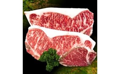 B3.豊後牛ステーキセット