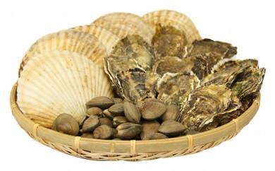 [№5863-0056]活貝づくしセット(牡蠣・あさり・ホタテ)(加熱容器付)