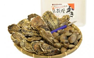 [№5863-0057]厚岸産殻付き牡蠣・貝あさりセット(加熱容器付)