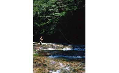 AG21 渓流釣り体験チケット【17500pt】