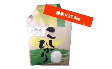 C-7 森田さんちのお米(精米)