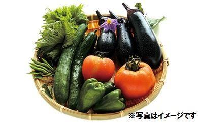 【一時受付休止】AJ21 季節の野菜詰め合わせ【60pt】