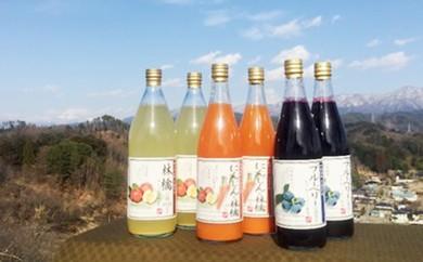 30-A48 人気果汁6本セット(KF07)