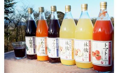30-A50 果汁満喫バラエティー 6本セット(KF11)