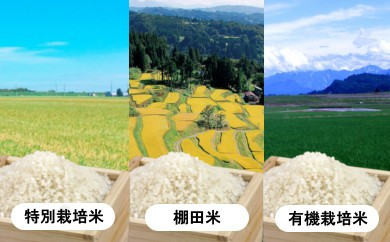 【C2904】魚沼産コシヒカリ 秋の食べ比べセット