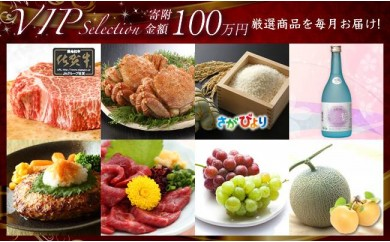 N99 絢爛☆VIP Selection☆2017 厳選品を毎月お届けします!