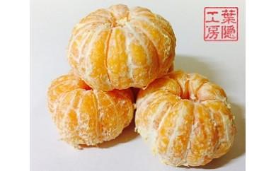 N-107 佐賀県太良町産 冷凍みかん 1.5kg