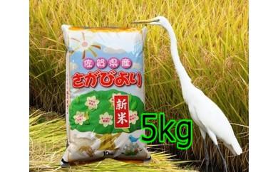 A-008 8年連続食味「特A」さがびより 5kg