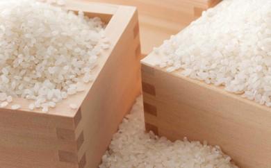 [№5779-0111]29年度米 ゆめぴりか・ななつぼし 各5kgセット(新米)