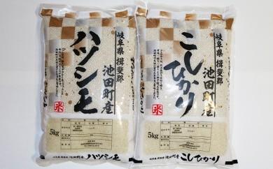[№5644-0268]池田町産 ハツシモ・コシヒカリ白米各5kg