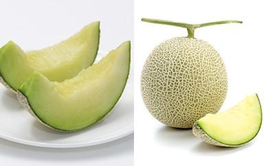 (639)茨城県産メロン食べ比べ!6月イバラキングメロン&7月アールスメロン頒布会(全2回)【500セット限定】