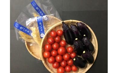 B-46◆安田町のおいしい水使用の生パスタと野菜のセット