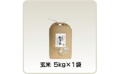 A0-4出雲國仁多米の玄米5kg
