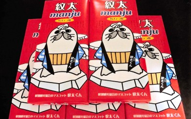 10-48 紋太まんじゅう(10個入) 5箱