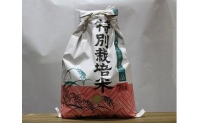 【5か月毎月定期配送】 南農園作「特別栽培コシヒカリ」 7kg×5回