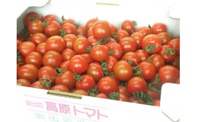 A0-15奥出雲高原トマト3kg(中玉サイズ)