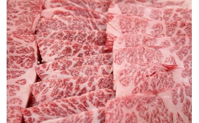 020-10秦野産牛焼肉セット