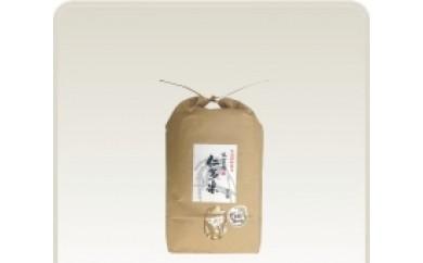 C0-3【毎月17日お届け】出雲國仁多米玄米5kg定期便3回