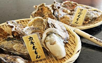 [№5863-0077]厚岸産『カキえもん』『丸えもん』食べ比べセット(レモン汁・ポン酢付)