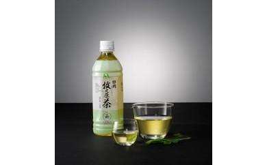 1-201 牧之原茶ペットボトル500ml (24本)セット