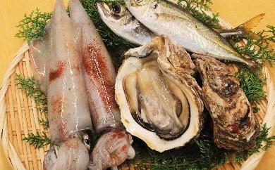 【C-21】おまかせ魚介類セット