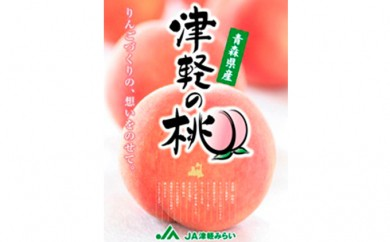 [№5731-0096]『津軽の桃・あかつき』2.5kg
