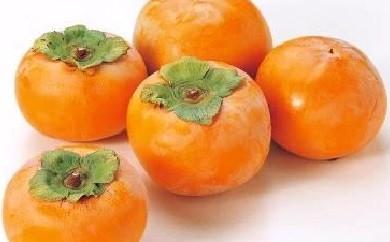 【E-17】富有柿